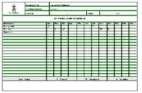 Audit Schedule Template
