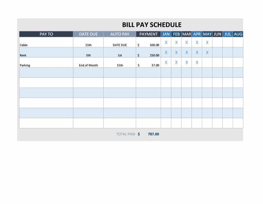 Bill Payment Schedule MS Excel Editable Template   Excel Templates
