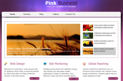 Website Templates Free Download Html With Css | http://webdesign14