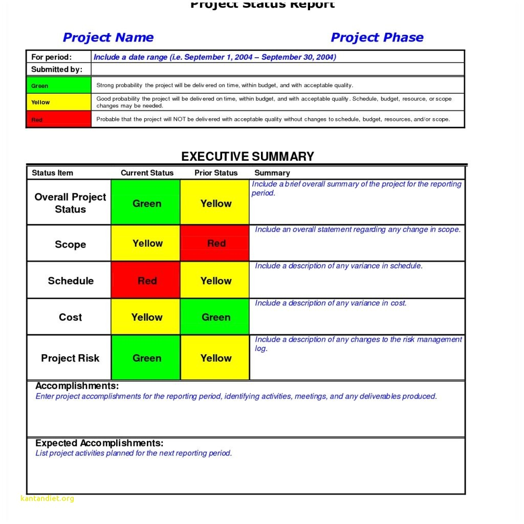 Project Weekly Status Report Template Excel Luxury 8 Weekly Status