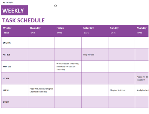 daily task schedule
